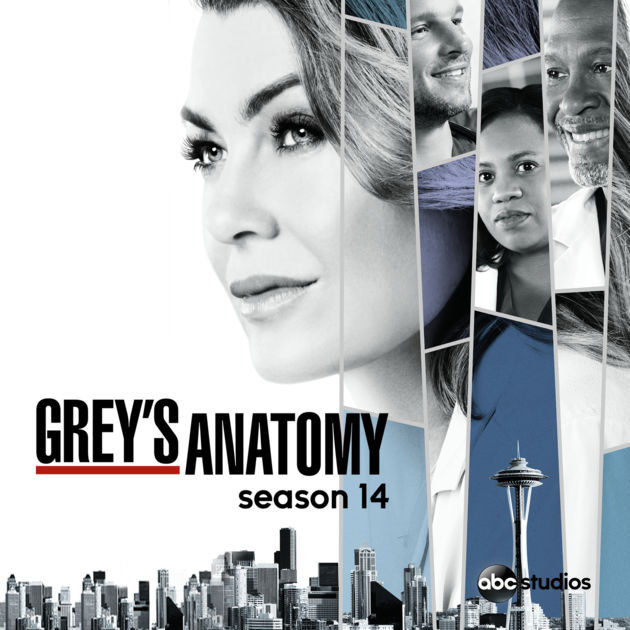 Gray\'s Anatomy season 14: The series will soon be finished according ...